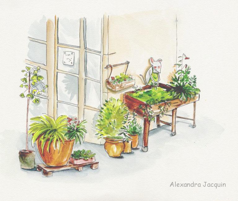 aquarelle jardinage